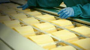 производство сыров