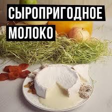обработка молока для производства сыра