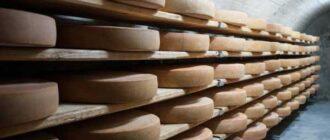 созревание сыра при температуре